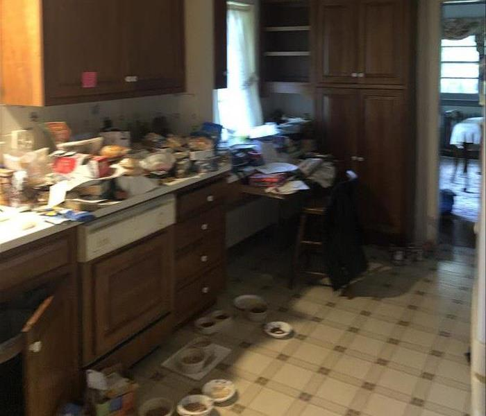 Cluttered, Dirty Kitchen