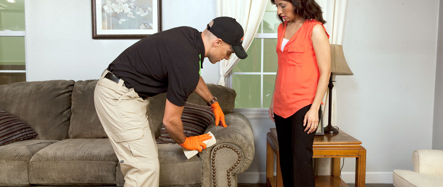Lansdale, PA carpet upholstery cleaning