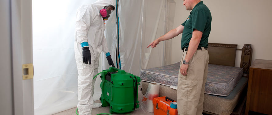 Lansdale, PA mold removal process
